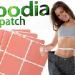 Пластири за отслабване Hoodia(Худия)